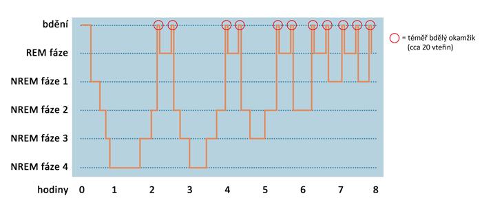 spankovy-cyklus-graf